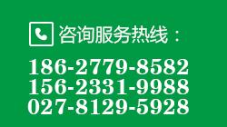 武汉风光互补路灯厂家电话